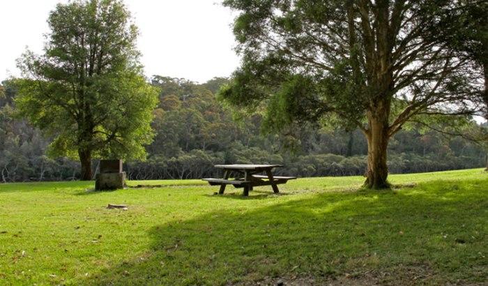davidson-park-picnic-area-03